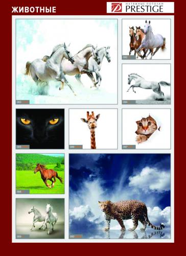 изображений для фотопечати на натяжном потолке - животные №2