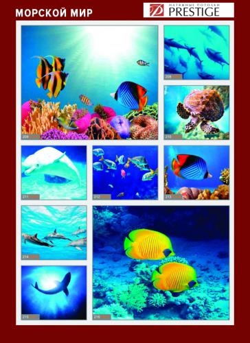 изображений для фотопечати на натяжном потолке - морской мир №1