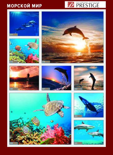 изображений для фотопечати на натяжном потолке - морской мир №2