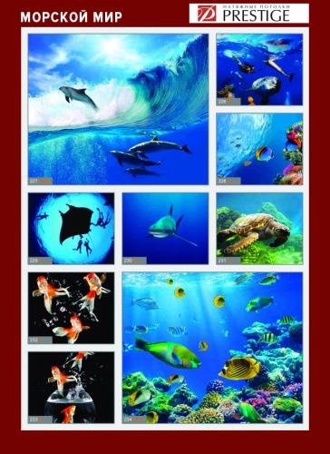 изображений для фотопечати на натяжном потолке - морской мир №3