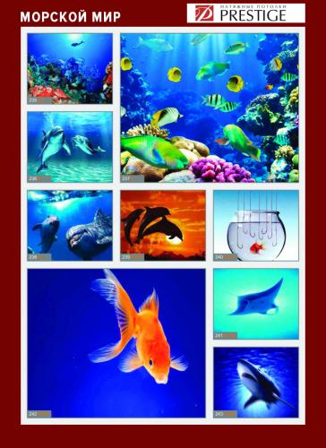 изображений для фотопечати на натяжном потолке - морской мир №4