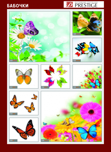 изображений для фотопечати на натяжном потолке - бабочки №1