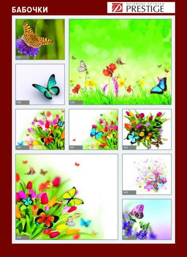 изображений для фотопечати на натяжном потолке - бабочки №2