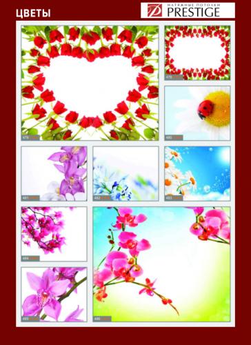 изображений для фотопечати на натяжном потолке -цветы №2
