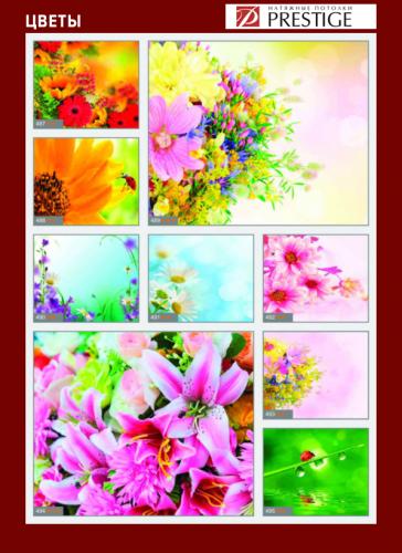 изображений для фотопечати на натяжном потолке -цветы №3