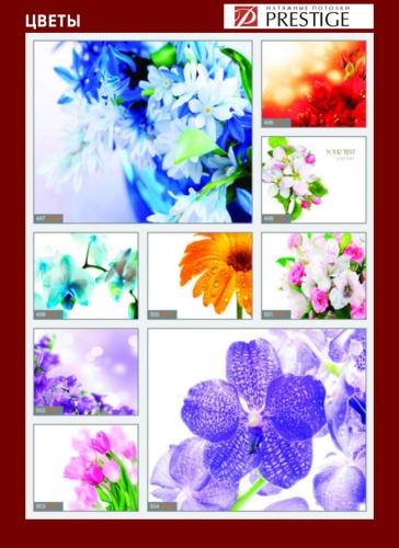 изображений для фотопечати на натяжном потолке -цветы №4
