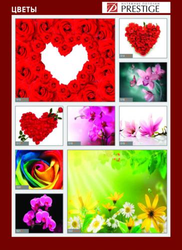 изображений для фотопечати на натяжном потолке -цветы №6