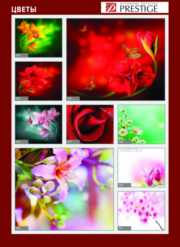 изображений для фотопечати на натяжном потолке -цветы №7