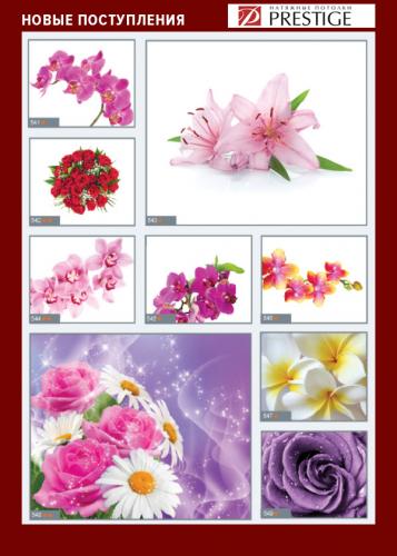 изображений для фотопечати на натяжном потолке -цветы №8